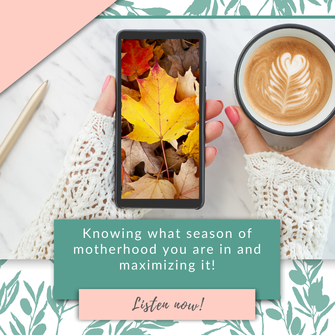Knowing what season of motherhood you are in and maximizing it!